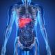 hepatites_Prancheta 1